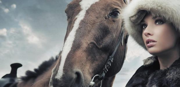 All Hail the Horse