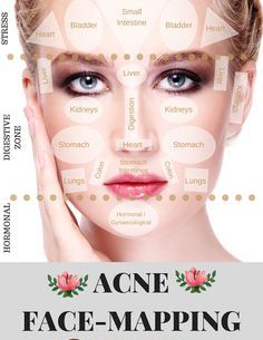 bee278dd0a597421ff018526fa2dbfb0--face-mapping-acne-face