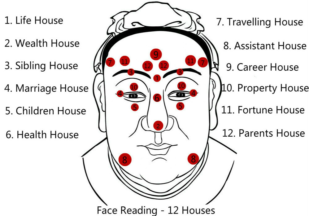 face-reading-twelve-house